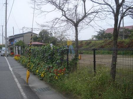 桜木町児童公園001.jpg