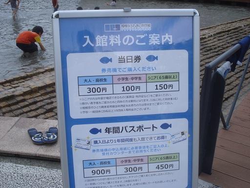 相模川006.jpg