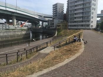 あすか緑地002.jpg
