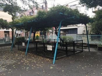 いちょう公園004.jpg