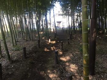 おくらやまの森緑地003.jpg