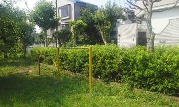 かすみね公園004.jpg