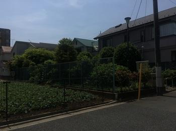 かみたけ児童遊園001.jpg