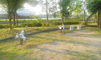 かもめ公園003.jpg