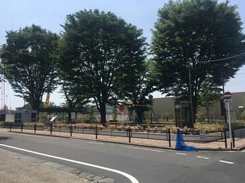 きたうら公園001.jpg