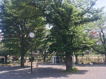 きたうら公園007.jpg