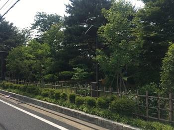 はなもみじ公園001.jpg