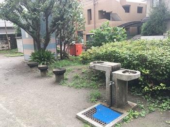 ひまわり公園003.jpg