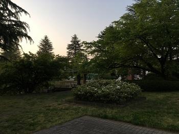 ひまわり公園008.jpg