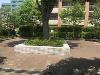 三ツ塚けやき緑地002.jpg