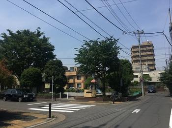 三ツ塚はなみずき公園001.jpg