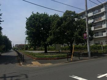 三ツ塚南緑地001.jpg