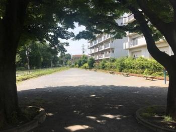 三ツ塚南緑地002.jpg