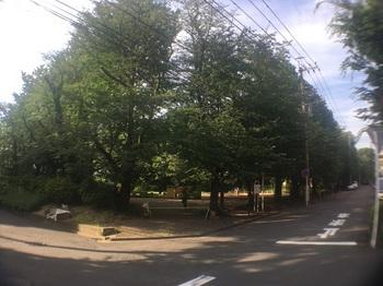 三田第一公園001.jpg