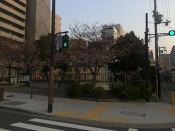 上汐北公園001.jpg