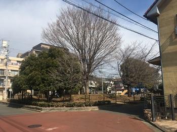 中ふれあい公園001.jpg