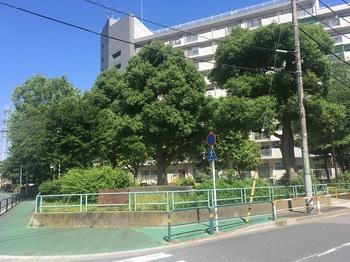 加青公園002.jpg