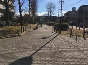 南田中いちょう並木公園002.jpg