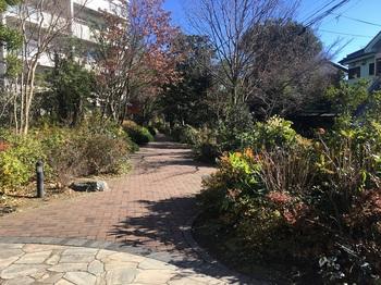 南田中いちょう並木公園004.jpg