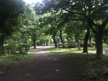 善福寺公園003.jpg