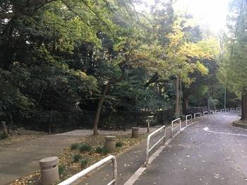大蔵三丁目公園001.jpg