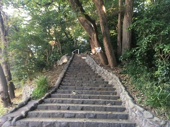 大蔵三丁目公園004.jpg
