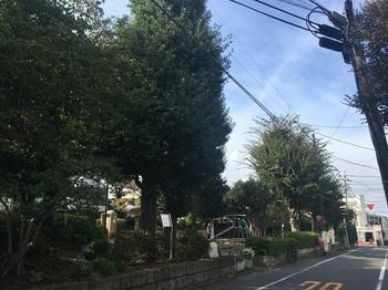 富士見台公園001.jpg