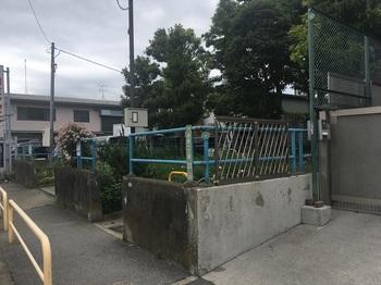小台東公園001.jpg