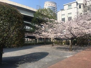 小網町児童遊園002.jpg