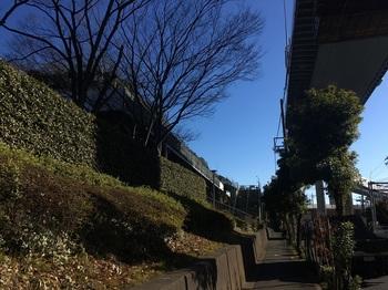 小菅東スポーツ公園001.jpg