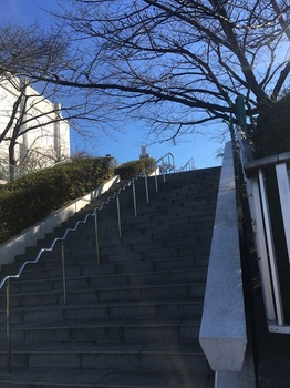 小菅西公園002.jpg
