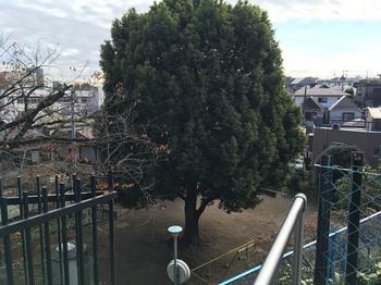 平張第二児童公園001.jpg