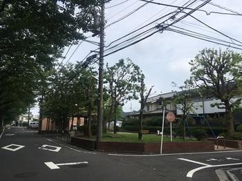 幸方公園001.jpg