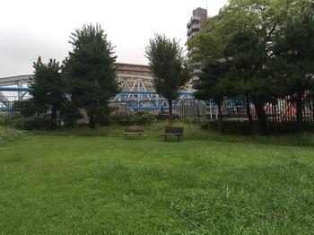 扇橋河川公園003.jpg