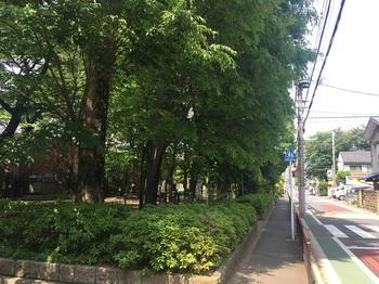 扶桑通り公園001.jpg