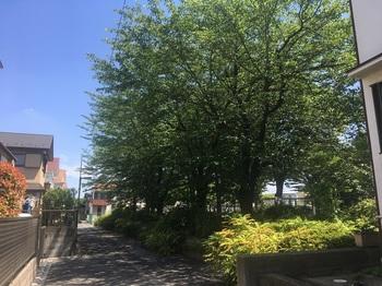押田公園001.jpg