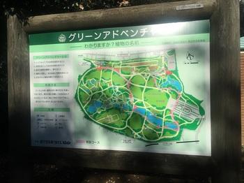 新宿御苑002.jpg
