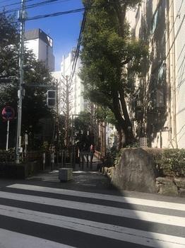 新宿遊歩道公園001.jpg