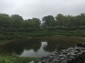 昭和記念公園002.jpg
