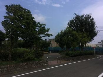 本郷公園001.jpg