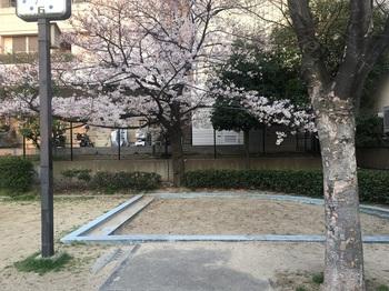 東平南公園003.jpg