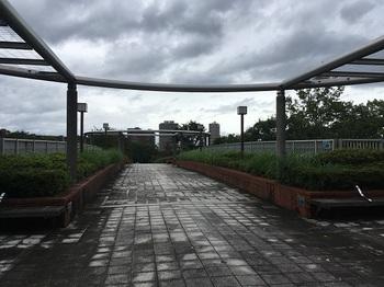 松木公園001.jpg