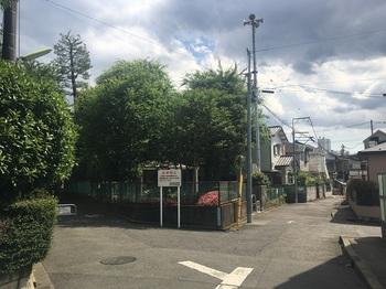 桜丘南公園001.jpg