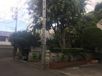 桜丘四丁目公園001.jpg