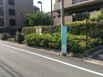武蔵関駅前緑地001.jpg