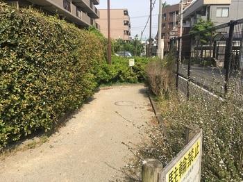 武蔵関駅前緑地002.jpg