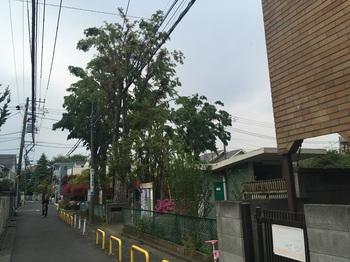 永福北公園001.jpg