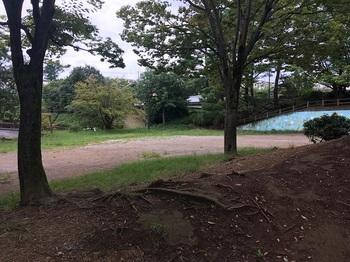溜池公園004.jpg