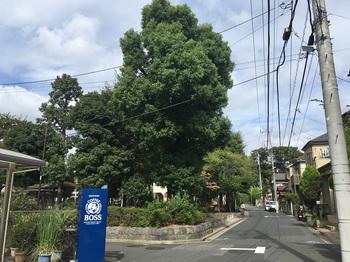 神明北公園001.jpg