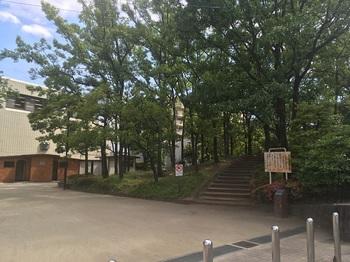 神谷堀公園001.jpg